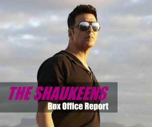 The Shaukeens Collection