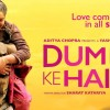 Dum Laga Ke Haisha 3rd Day Collection: Sunday Business