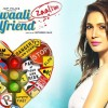 Dilliwaali Zaalim Girlfriend Expected Total Box Office Collection
