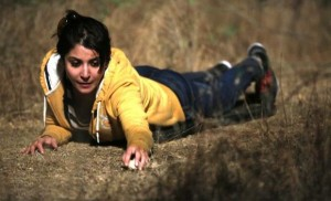 nh10-movie box office report