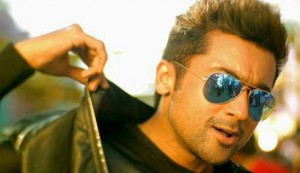 masss total collection