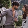 Shaandaar 1st Day Collection, Registered 'Shaandaar' Opening of 13.10 Cr