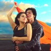 Dilwale 12th Day Collection, Grosses 130 Cr as Total on Indian Screens