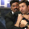 20th Day: Ghayal Once Again Total Collection at Domestic Box Office