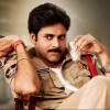 21st Day: Sardaar Gabbar Singh Total Collection after 3 Weeks across AP/Telangana