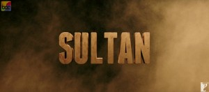 Sultan Movie Wallpapers