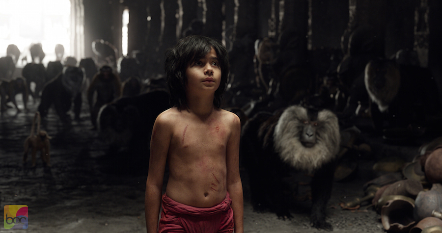 the-jungle-book-box-office-collection-2