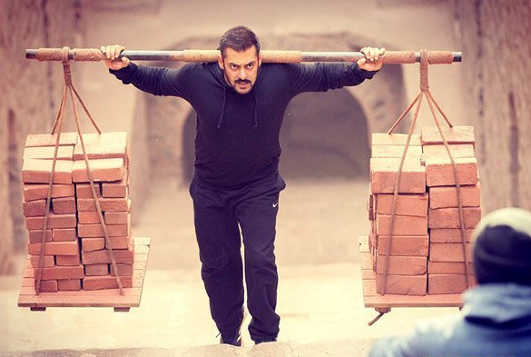 Sultan Box Office Collection