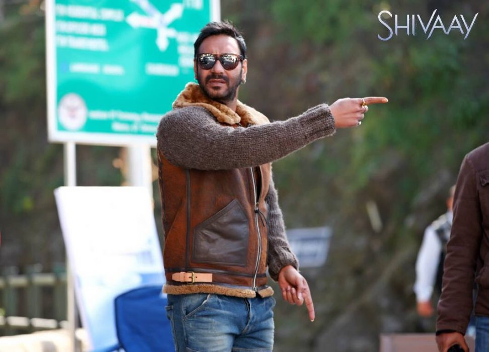 shivaay 16th day collection, shivaay 3rd saturday collection, shivaay box office collection, shivaay total collection, shivaay 16 days total collection