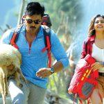 Box Office: Dhruva 1st Day Collection, Takes Smashing Start Worldwide