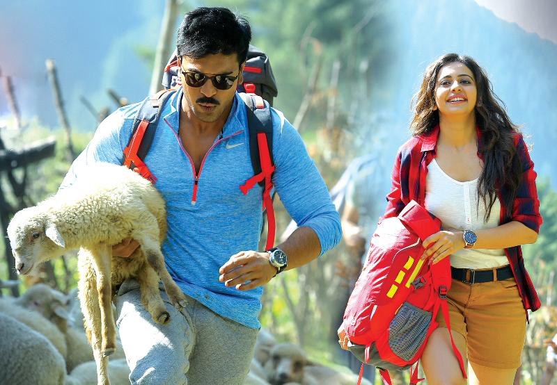 dhruva 1st day collection, dhruva first day collection, dhruva friday collection, dhruva box office collection, dhruva opening day collection, dhruva worldwide collection, dhruva total collection
