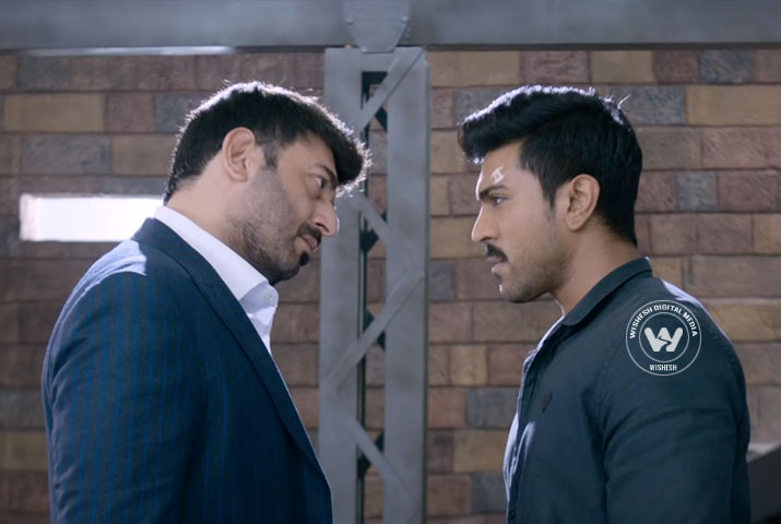 dhruva 3rd day collection, dhruva third day collection, dhruva sunday collection, dhruva box office collection, dhruva total collection, dhruva 3 days total collection
