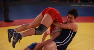 dangal 12th day collection, dangal twelfth day collection, dangal 2nd tuesday collection, dangal box office collection, dangal total collection, dangal 12 days total collection, dangal day 12 collection
