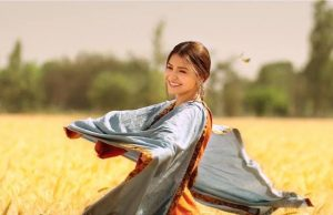 Phillauri 5 Days Total Box Office Collection
