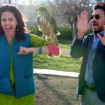 1 Month Total Collection of Hindi Medium, Irrfan Khan Starrer Grosses 100 Crore Worldwide