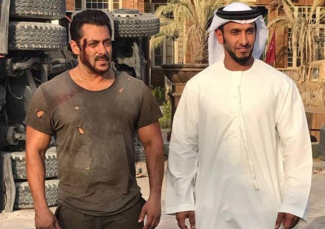 15th day box office collection of tiger zinda hai