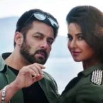 18th Day Collection of Tiger Zinda Hai, Sequel to Ek Tha Tiger Earns 312 Crore Total