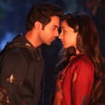 19th Day Collection of Stree, Surpasses Lifetime Total of Sonu Ke Titu Ki Sweety by 3rd Tuesday