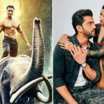 5th Day Collection of Junglee & Notebook, Vidyut starrer Remains Steady on Tuesday