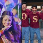 Box Office Collection: Dream Girl 19th Day and Chhichhore 26th Day Business Report